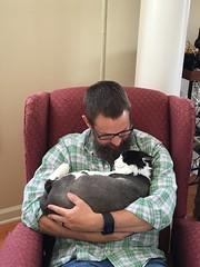 The Lovefest Continues (ShanMcG213) Tags: cats cat nap joey catnap sleepy lazy cina catandowner blackandwhitecat lazycats whiteandblackcat joeybutler