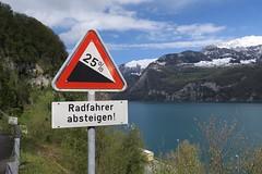 Walensee - Steep Hill (Kecko) Tags: road lake sign geotagged schweiz switzerland see traffic suisse swiss strasse kecko ostschweiz svizzera verkehr slope incline glarus gl verkehrszeichen walensee 2016 verkehrssignal swissphoto geflle salleren geo:lon=9146500 geo:lat=47122480