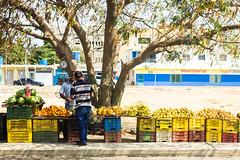 Color (Estevesito) Tags: street sun luz fruits smile calle colours venezuela alegria amistad caribe puntofijo