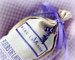 Lavender scented bag...MM (Through Serena's Lens) Tags: life blue color macro bag still small lavender gingham fabric fragrant ribbon mm mondays scented