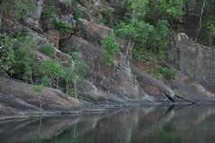 Peaceful reflection (juliecarmen.fahy) Tags: park trees lake reflection water pool mirror rocks nt australia national outback kakadu northern territory gunlom