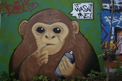 It wasnt me! (Pascal Volk) Tags: berlin graffiti wideangle wa ww superwideangle sww uwa weitwinkel swa ultrawideangle 31mm uww berlinkreuzberg friedrichshainkreuzberg berlinschneberg ultraweitwinkel superweitwinkel tempelhofschneberg canonef1635mmf4lisusm canoneos6d parkamgleisdreieck