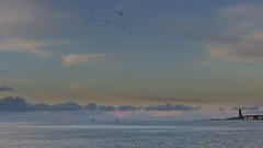 Kiel Fjord in evening light II (Jenner Ka) Tags: kiel eveninglight abendlicht falckenstein falckensteinerstrand