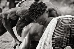 2015_IMG_36024-LR 01 1A N&B1E (Balila) Tags: lutte casamance afrique sngal luttesvillageoises
