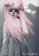Shadow touch (pure_embers) Tags: uk pink white alpaca girl ball hair photography skull grey photo doll dolls skin sugar bjd resin pure joint embers calavera msd morrigan unoa lusis moccachatelle embersmorrigan