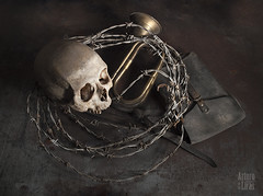 Los restos de la guerra (Arturo de las Liras) Tags: war guerra any varios instruments 2010 bodegon calavera cuadro batalla tipo corneta pincells