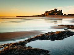 Sunrise at Bamburgh Castle (Steve_Mallett) Tags: beach sunrise bamburghcastle northumberland england sescape coast rockpools