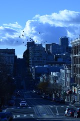 (Badison) Tags: sf california blue urban birds afternoon hills cropped nobhill shotfromdslrandcroppedheavily