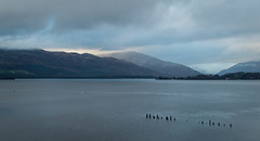 Grey day at Loch Lomond (Devilishmess) Tags: water loch lochlomond