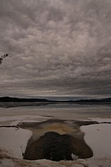 2016_0204Brooding-Sky0002 (maineman152 (Lou)) Tags: cloud storm nature rain clouds dark landscape maine stormy rainstorm brooding february cloudysky naturephotography landscapephotography naturephoto provincelake darkskys landscapephoto