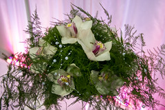 floral compositions (WDnet) Tags: wedding party flower art floral beautiful colorful background decoration compositions atmosphere ornament ornaments moment handicrafts climate floristry exceptional d5300