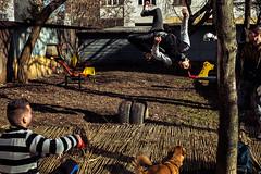 Cluj Napoca DSCF7673 (Mihai Ciama) Tags: sport training jump boxing gym