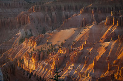 Heavenly Warmth (Life_After_Death - Shannon Day) Tags: life pink sunset orange mountain mountains art colors canon landscape outdoors photography eos death utah warm long day desert time outdoor pastel stripes stripe warmth canyon erosion shannon national cedar layer after hoodoo layers dslr sherbet canondslr canoneos heavenly canyons breaks striped nationalmonument hoodoos striated erode striation layered cedarbreaks lifeafterdeath cedarbreaksnationalmonument 50d shannonday canoneos50d eosdslr canoneos50ddslr lifeafterdeathstudios lifeafterdeathphotography shannondayphotography shannondaylifeafterdeath lifeafterdeathstudiosartandphotography shannondayartandphotography