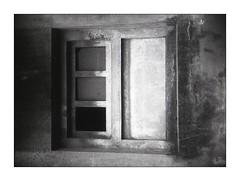 half frame ! ;/) -2 (18x24) (schyter) Tags: camera bw film 35mm project monocromo foto tank fsu bn homemade e ap soviet di una epson 100 pan v600 135 halfframe bianco development ilford nero bianconero 18x24 compact analogica 125 lodi analogic bordo 2016 blackwithe belomo pellicola surreale allaperto lodigiano 2828 adox adonal chaika2 sovietlens mmz industar69 2 basiasco