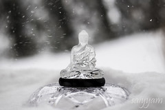 Calm during the Storm (vanita kataria) Tags: snowflake blackandwhite bw sculpture white storm black reflection glass squall happy washingtondc concentration carved washington still thought peace crystal buddha january happiness windy monotone lord calm gale carve thinking balance serene brooding swarovski meditation tempest snowfall jonas relaxed blizzard winds tranquil pondering icesculpture contemplation musing reverie 2014 consideration windless dhamma whirlwind vipassana strongwind highwind rumination unruffled snowzilla lordbuddha deliberation untroubled unperturbed unflustered snowfail january2016 quietthenightwascalm blizzard2016 snowzilla2016 jonas2016