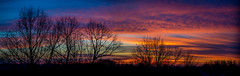 Sunrise (Premal Dhruv Photography) Tags: morning blue trees winter sky orange usa cloud sun cold tree yellow sunrise landscape early newjersey purple cloudy nj freezing dry crisp nofilter 2016 megenta