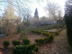 My Birnam Garden (6) (StevanHogg05) Tags: scotland dunkeld birnam