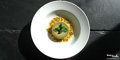 Lemon Passion Fruit Panna Cotta (wearandcheer) Tags: cooking dessertrecipes lemonpassionfruitpannacotta