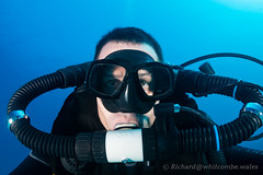 CCR Selfie (WhitcombeRD) Tags: ocean life travel blue sea vacation holiday fish coral island islands healthy marine warm underwater grand scuba diving evolution clear tropical caribbean cayman reef rebreather ccr grandcayman isley divetech sidemount richardwhitcombe