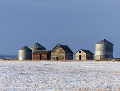 Variety is the spice of life (annkelliott) Tags: new old winter snow canada field rural landscape scenery outdoor shed farmland storage alberta silos prairie prairies granary allinarow ruralscene annkelliott anneelliott fz200 eofcalgary fz2003 1february2016