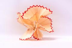 Curly Wurly (ihateliver) Tags: pencil shavings red petallike flickrchallengegroup flickrchallengewinner