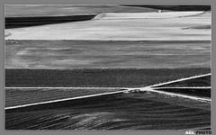 Cruce de caminos. Crossroad (AGL PHOTO) Tags: espaa planta de para paisaje valladolid caminos fotos campo cultivos crossroad abstracto cereales aire libre cruce hierba uruea borde