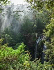 Twin Falls, Springbrook NP (NettyA) Tags: misty clouds forest waterfall rainforest australia twinfalls bushwalking qld queensland sunrays bushwalk eucalypts springbrook goldcoasthinterland 2016 springbrooknationalpark scenicrim seqld warriecircuit scbwc sonya7r