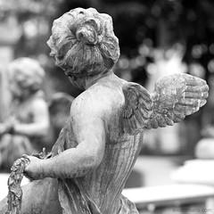 your guardian angel (ewaldmario) Tags: vienna 2 two monument monochrome grave statue angel composition square hope wings nikon dof bokeh skulptur figure sw backside engel grab shoulder schwarzweiss zentralfriedhof turnaway schutzengel gravemonument friehof guardianangle ewaldmario ewaldmariocom