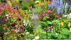 English Country Garden - Heath (Derbyshire) (beautifulbritain) Tags: derbyshire heath flowerfestival allsaintschurch englishcountrygarden cottagegarden beautifulbritain heathvillage heathscarecrowfestival