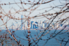 Manhattan Skyline (Erin Cadigan Photography) Tags: city nyc newyorkcity urban newyork building tree tourism water horizontal skyline architecture river island harbor daylight branch cityscape view manhattan worldtradecenter frame borough daytime wtc hudson statenisland freedomtower fortwadsworth