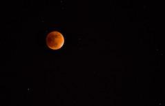 The Orange Moon (david_02863) Tags: sky orange moon cold night circle stars noche nikon luna estrellas astronomy zoomlens d5100