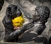 Monkey World (dorsetpeach) Tags: sculpture statue monkey memorial monkeyworld jimcronin
