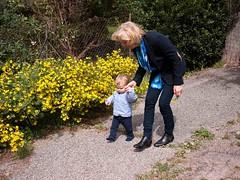 Avec Christine (Dahrth) Tags: baby sun flower fleurs garden lumix soleil raw jardin littleboy bb yellowflowers sunnyday gf1 petitgaron micro43 panasoniclumixgf1 20mmpancake gf120 microquatretiers