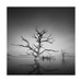 Petrified of the dark by Nick green2012 - :-)