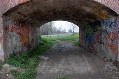il famoso sottopasso (Clay Bass) Tags: green subway fuji natural tripod murales hdr bracketing xm1 savigliano
