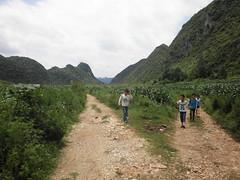 Guizhou China 2015 8 () Tags: china mountains asia  guizhou