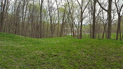 Three mounds at Effigy Mounds NM