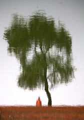 loneliness (dr.ms_haque) Tags: red color reflection tree green girl canon geometry dhaka kkk bangladesh