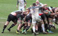 2016_04_02 Quins v Newcastle_23 (andys1616) Tags: newcastle rugby april stoop falcons aviva premiership twickenham quins 2016 harlequins rugbyunion