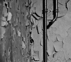 Heizungsrohre 2 (Lichtabfall) Tags: blackandwhite monochrome blackwhite decay pipes urbanexploration schwarzweiss verlassen urbex rohre verfall lostplaces lostplace einfarbig