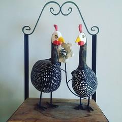 - tô fraco.  - tô fraco!  #artesanato #artesanatomineiro #galinha #decoração #decorar #decoracao #decoraçãomineira #dangola (fabriciabarcelos) Tags: galinha artesanato decoração decoracao decorar artesanatomineiro dangola decoraçãomineira