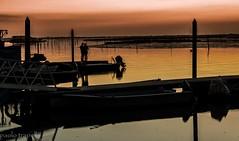 innamorati.... (paolotrapella) Tags: sunset italy color sol water del la agua wasser tramonto sonnenuntergang porto puesta acqua farbe