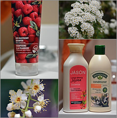 Fragrance Collage (Jo-Warming Up To The 80's :)) Tags: flowers collage blossoms shampoo fragrant conditioner fragrance chokecherry bridalveilspirea sundaytheme wk14 theflickrlounge