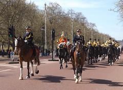 household cavalry mounted regiment-freedom of the city of london parade 20 04 2016 (7) (philipbisset275) Tags: unitedkingdom centrallondon englandgreatbritain householdcavalrymountedregiment themallcityofwestminster 20042016 freedomofthecityoflondonparade