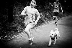 (Michael_Booth) Tags: leica newyorkcity dog children centralpark manhattan candid running monochrom leicastyp007 leicasummarits70mmasphcs