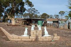 St Arnaud (Westographer) Tags: rural garden australia victoria oldschool kangaroo koala drought sheds gardenornaments countrytown starnaud concretegardenornaments
