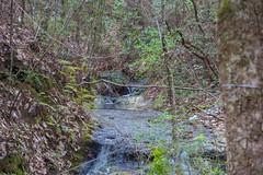 DSC_2680 (Bob Carlson) Tags: park state falling waters