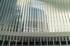 oculus-1-16 (Visual Thinking (by Terry McKenna)) Tags: nyc wtc oculus