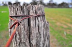 Sheep farm fence, Happy FF! (HOLLY HOP) Tags: rural fence wire fences rusty australia emu fencepost rustyandcrusty sheepfarm hff centralvictoria farmfences paddockfence fencefridays