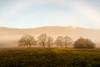Landscape (dprezat) Tags: lot creysse quercy midipyrénées departementdulot 46 sudouest lanscape paysage nature campagne brouillard brume nikond800 nikon d800 occitanie occitania